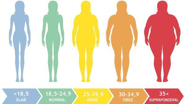infografic indice de masa corporala