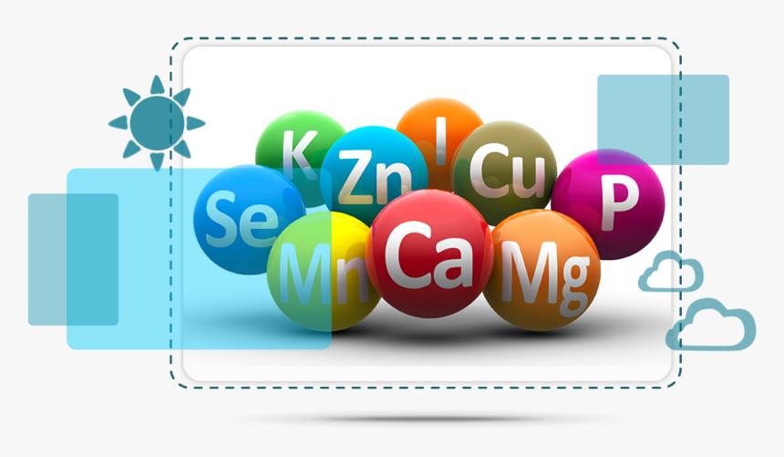 Multivitamine si minerale banner