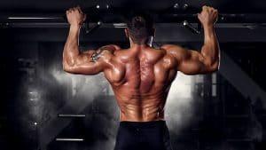 Definirea musculara fitness