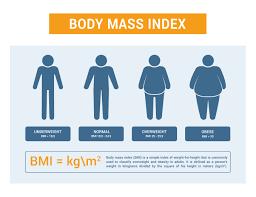 bmi metabolismul bazal
