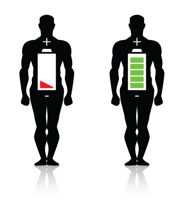 rata metabolismului bazal