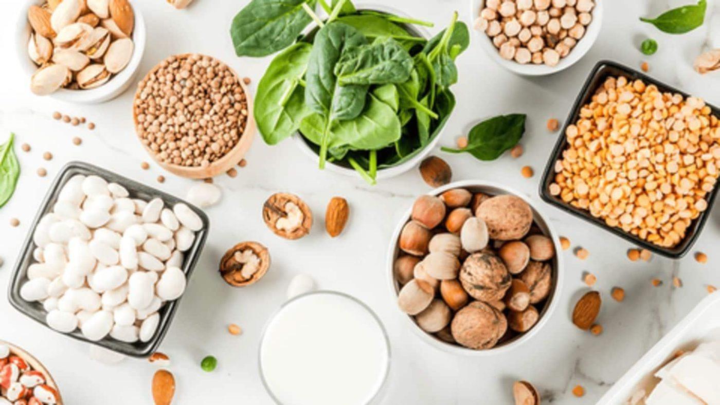 surse de proteine fara carne