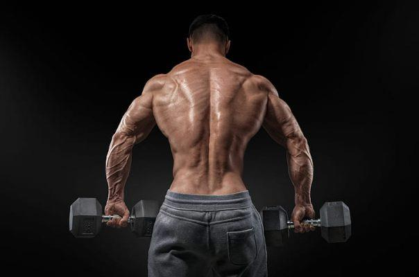creste masa musculara
