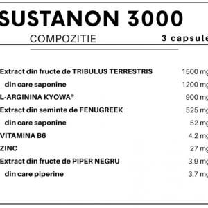 SUSTANON 3000 COMPOZITIE min 1536x1288 min