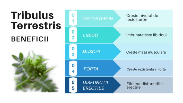 TESTO BOOSTER contine tribulus terrestris