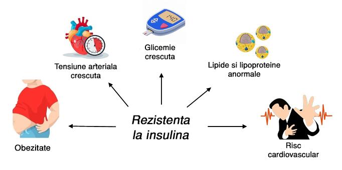Insulina -rezistenta la insulina