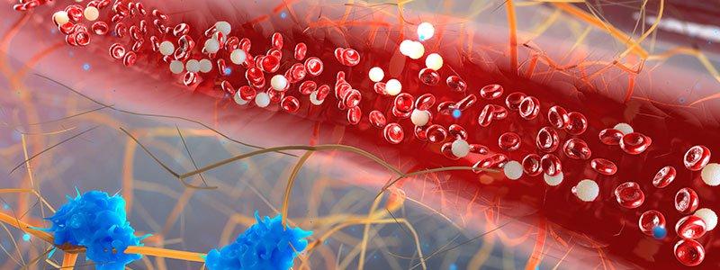 Colesterol mărit - Trigliceridele - un alt tip de lipide