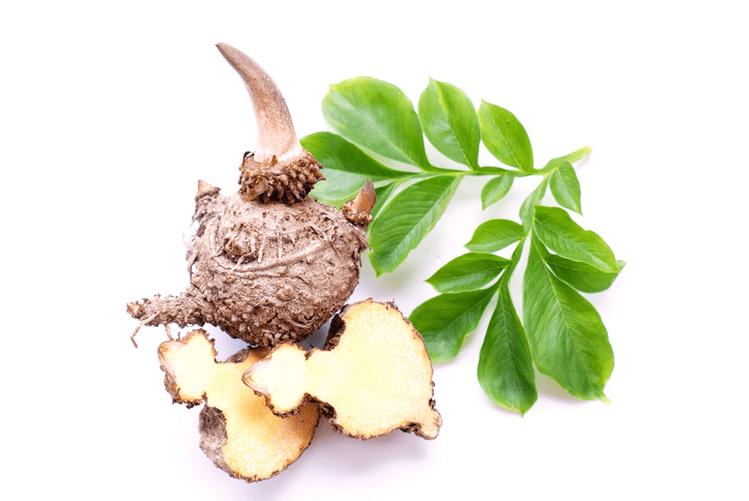 fibre Glucomannan - gastro colon - fibre alimentare