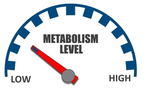 cum masori accelerarea metabolismului